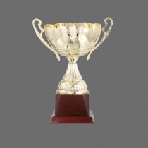 Elegant Spanish Golden Trophy - Wooden Base with Metal, Acrylic or Digital Sticker Branding - Awards - Various Sizes (Traditional Cup with 2 Handles)