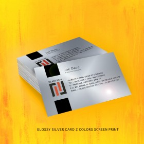 Glossy (Stainless Steel Shine) Silver Card